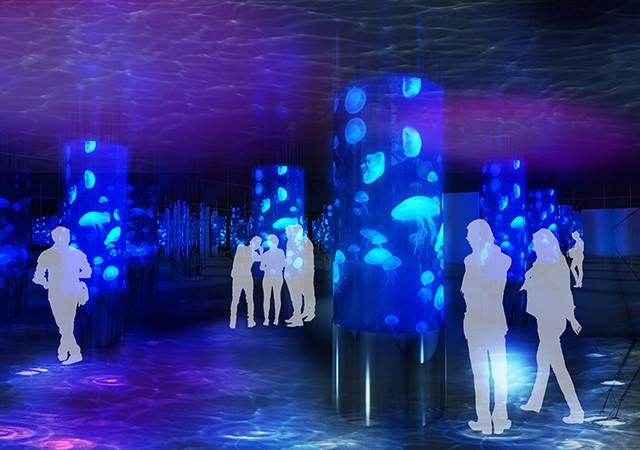 沖縄に2つ目の水族館『DMMかりゆし水族館』で、リアルバーチャル体験