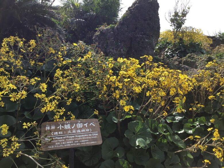 中城城跡の久高遙拝所