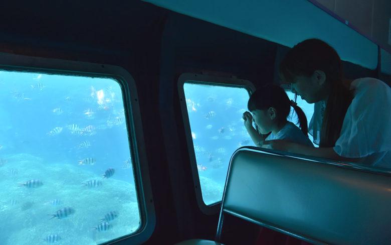 宮古島のシースカイ博愛で海の中をのぞく