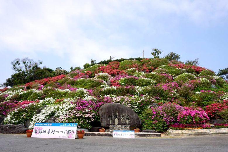 5万本のつつじが咲き誇る「第37回東村つつじ祭り」開催