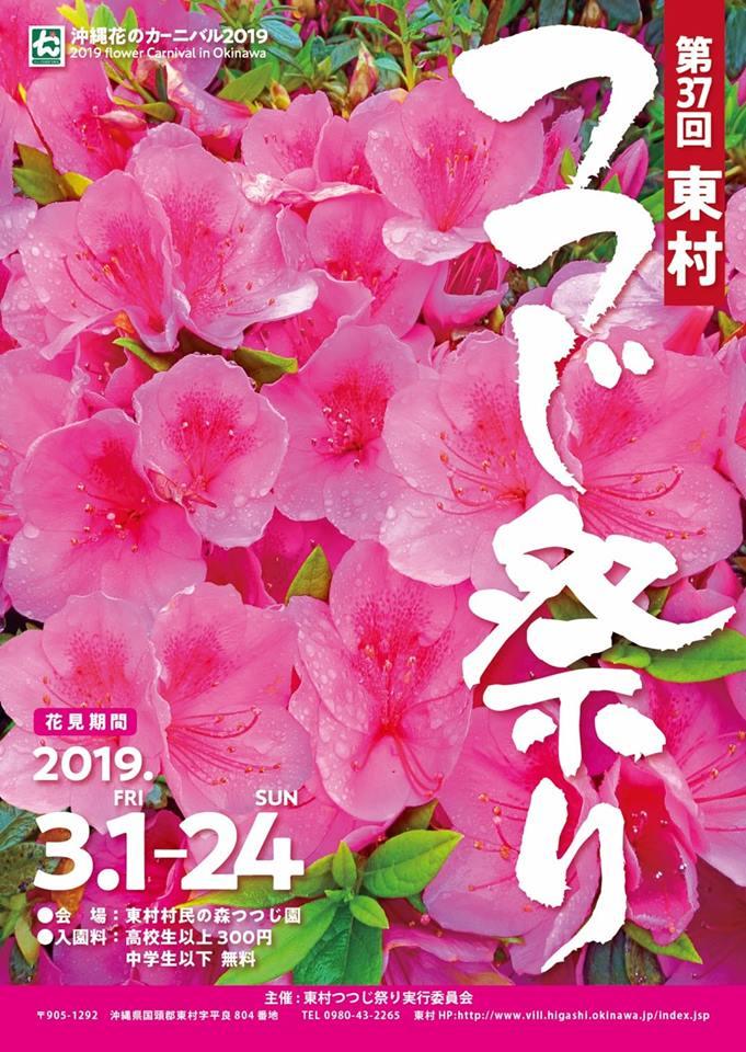 5万本のつつじが咲き誇る「第37回東村つつじ祭り」がはじまる