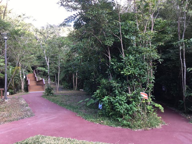 名護市轟の滝遊歩道森林浴の道