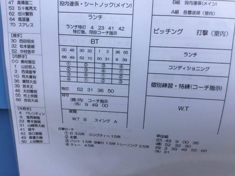 プロ野球沖縄キャンプイン!浦添市のヤクルトキャンプ編