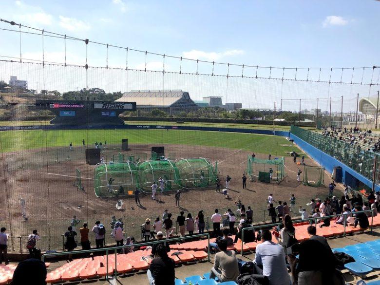 プロ野球沖縄キャンプイン!浦添市のヤクルトキャンプ編打撃練習