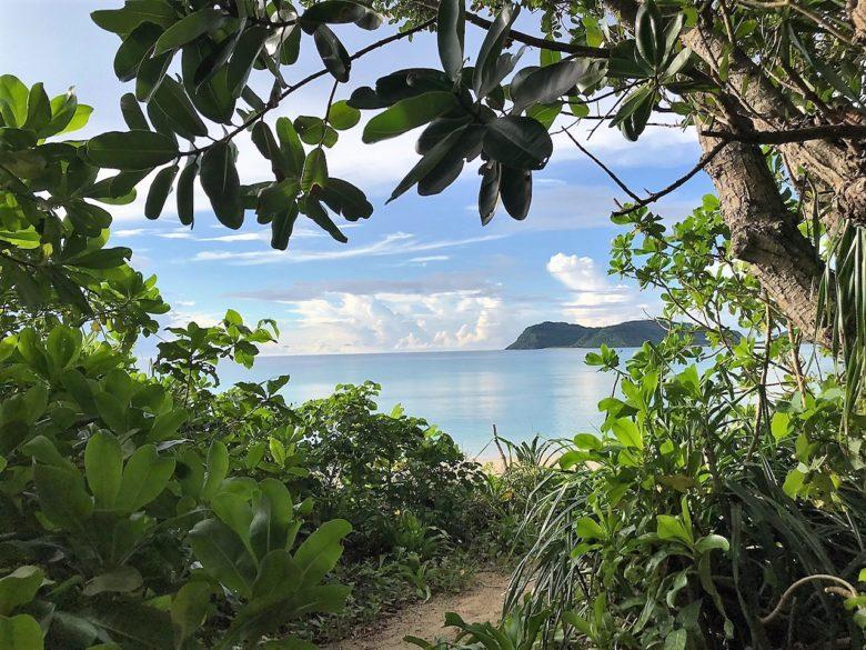 八重山諸島めぐり体験記~陸の孤島「西表島・船浮」の浜辺