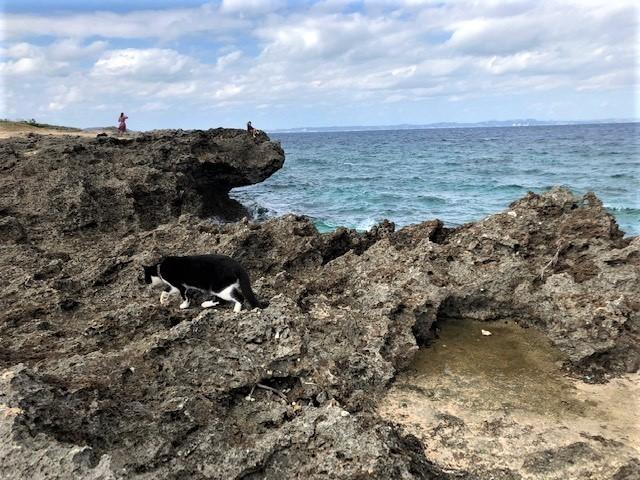 久高島のアマミキヨが最初に降りたと言われるカベール岬