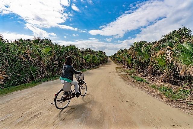 神の島「久高島」をレンタサイクルで突っ走る