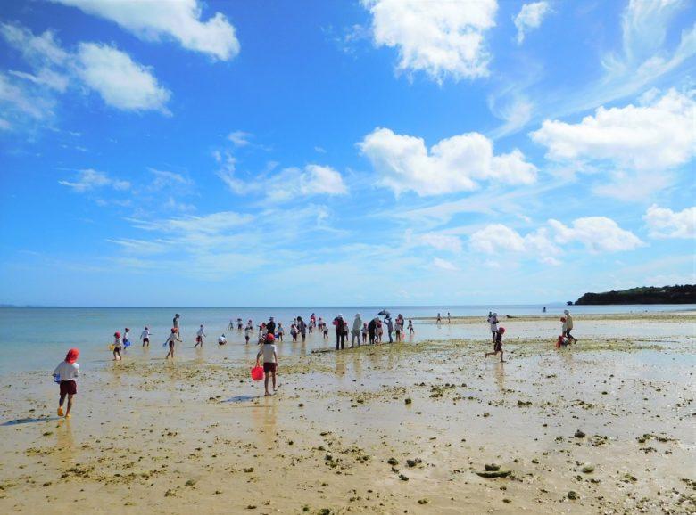 ティラジャー(コマ貝)は沖縄の潮干狩り