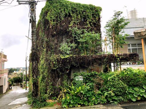沖縄そばランキング食べログ1位「てん to てん」で木灰そば