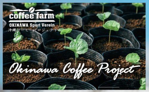 沖縄SV高原直泰氏とネスレが国産コーヒー豆を名護で特産に!