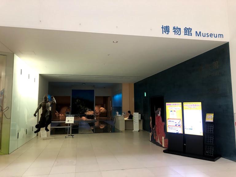沖縄県立博物館は料金割引きになる。