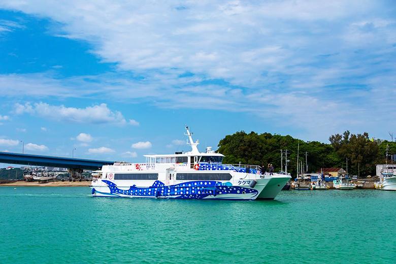 那覇・泊ふ頭から本部町へ高速船で海上移動!本部町内を無料シャトルバス運行