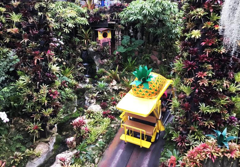 ナゴパイナップルパークでパイナップル号が走る