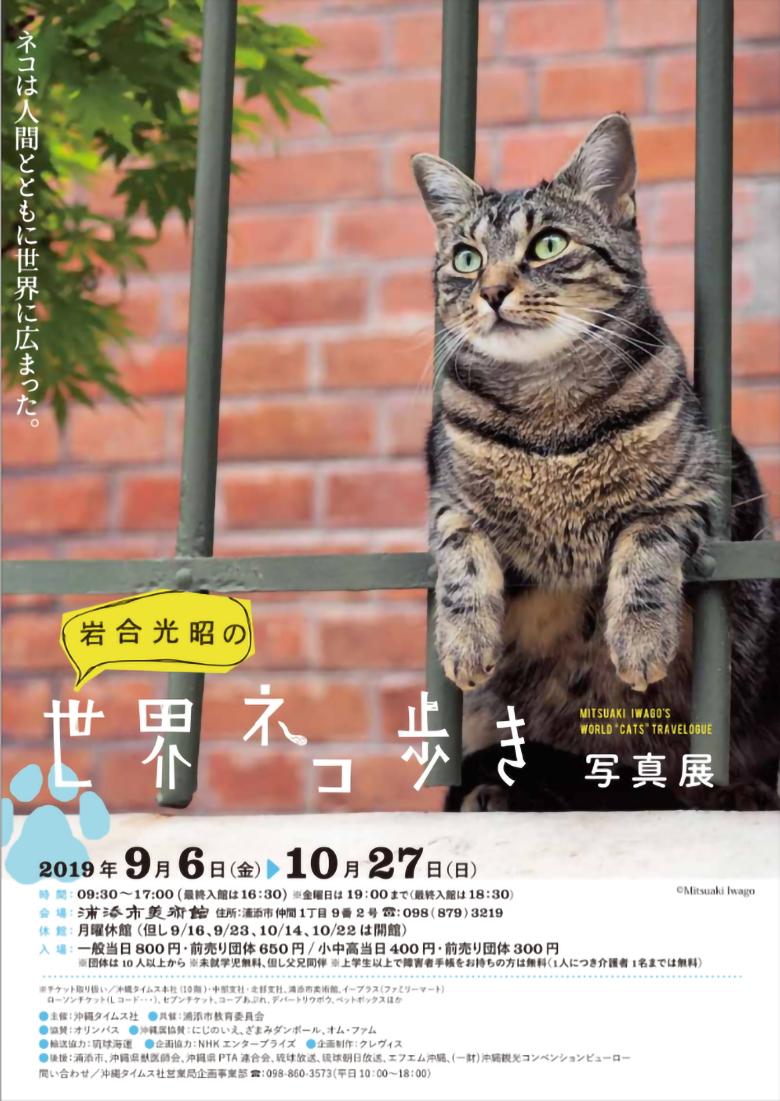 岩合光昭の世界猫歩き