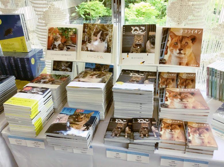 浦添市美術館で猫ショップ