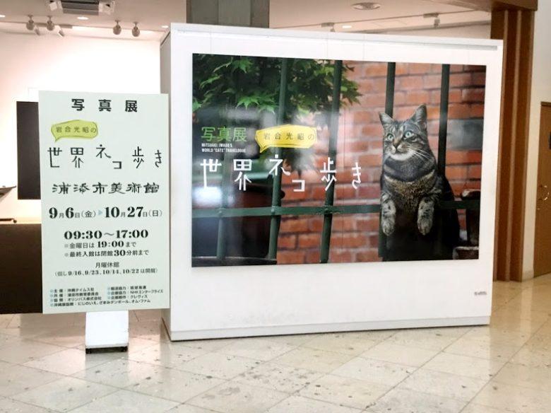 浦添市美術館で開催中世界の猫歩き
