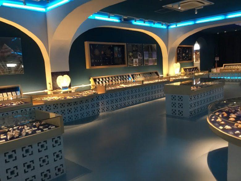 古宇利オーシャンタワー内の貝の博物館