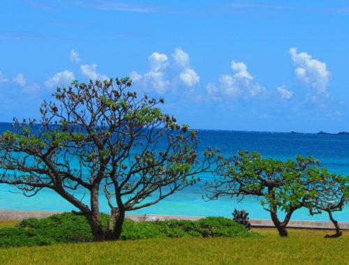沖縄への移住前に、体験・下見ツアーに参加しよう@久米島