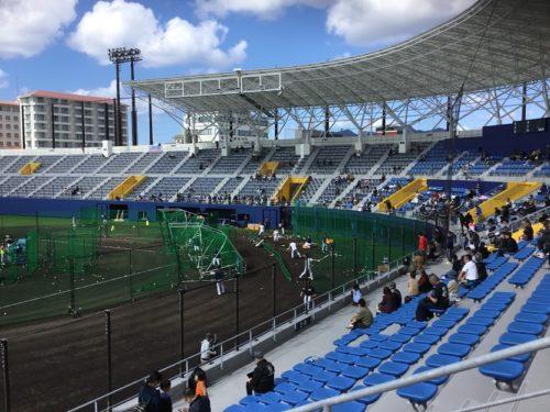 2020年プロ野球沖縄キャンプ情報!2月1日からスタート!