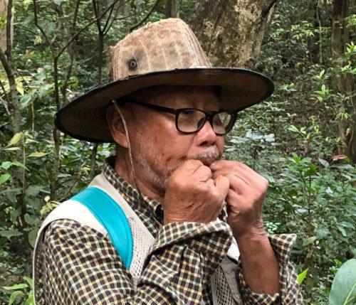 久米島の自然を歩く!ニブチの森散策ツアー