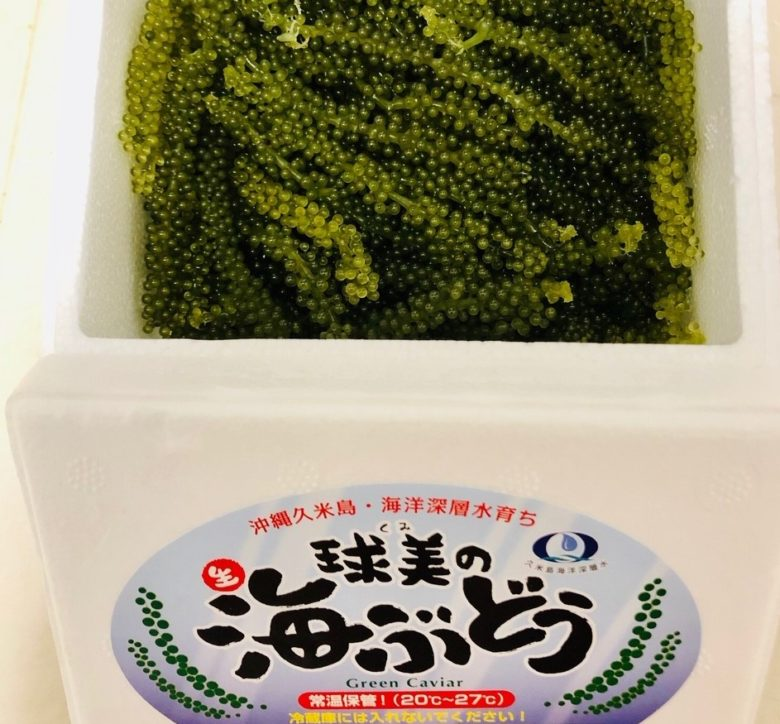 久米島の海ぶどう