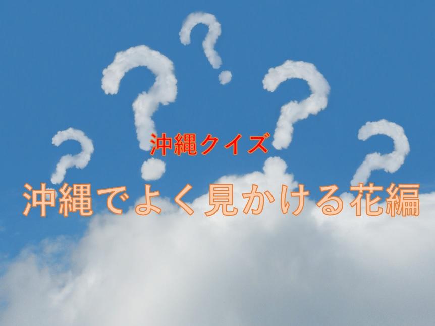 全問正解したら沖縄病確定!?「沖縄でよく見かける、この花の名前は?」