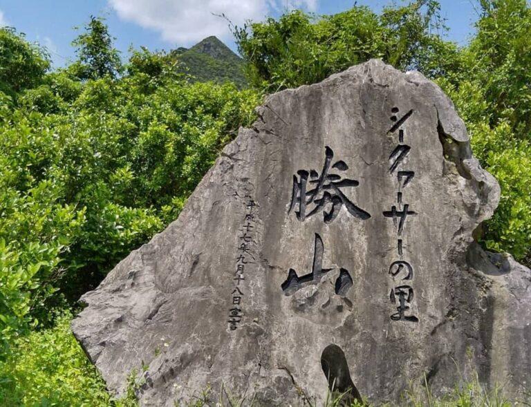 勝山シークヮーサー収穫体験と嘉津宇岳(かつうだけ)の軽登山